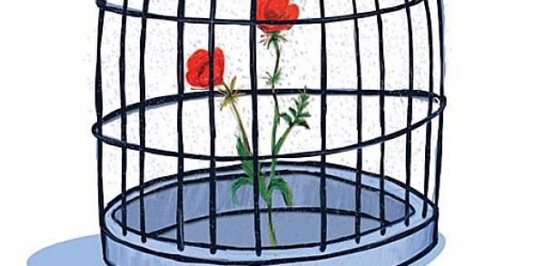 بوستر لـ محمد أبو عفيفة، ٢٠٠٨، من موقع بوستر فلسطين