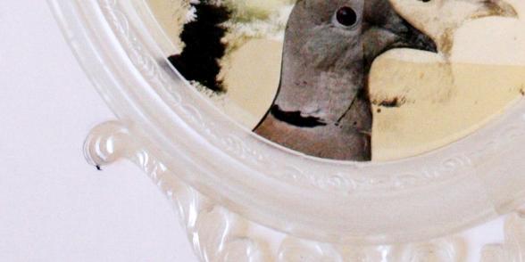 شدى الصفدي، مقطع من عمل تركيبي بعنوان تحديق، ٢٠١٩