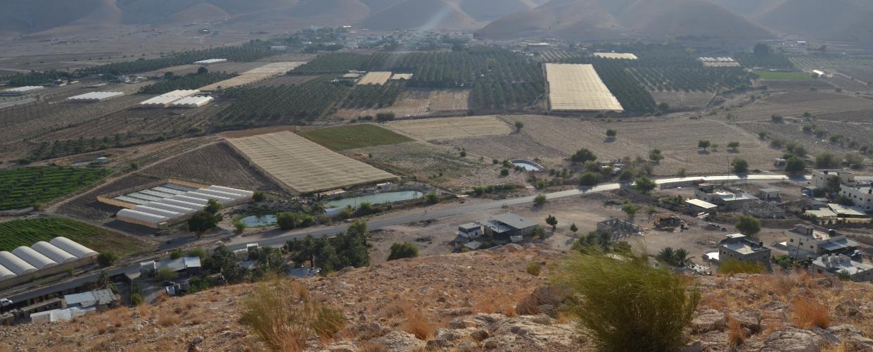 مقطع من قرية الجفتلك، تصوير أحمد حنيطي