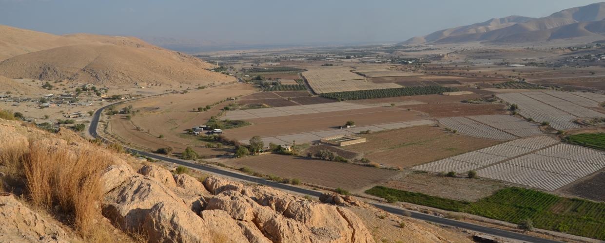 الصورة: من منطقة الجفتلك، تصوير أحمد حنيطي